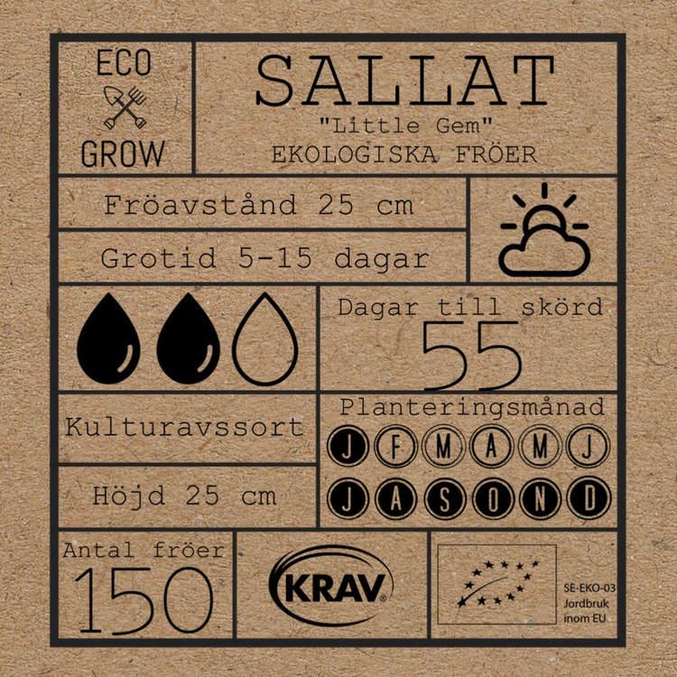 Sallat - Little Gem