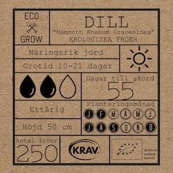 Dill - Mammoth Anethum Graveolnes
