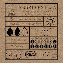 Kruspersilja - Triple Moss Curled 2