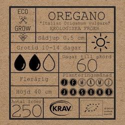 Oregano - Italian Origanum vulgare