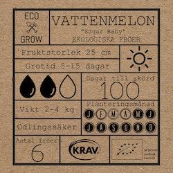 Vattenmelon - Sugar Baby