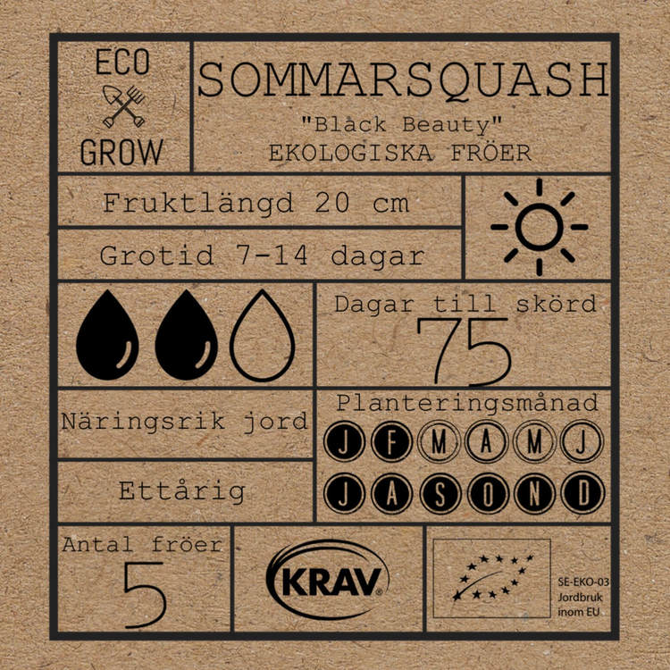 Sommarsqaush - Black Beauty