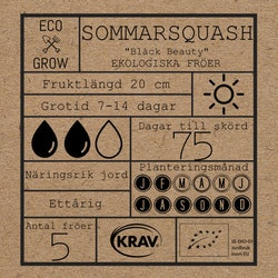 Sommarsqaush - Black Beauty
