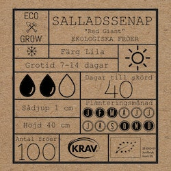 Salladssenap - Red Giant