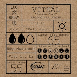 Vitkål - Golden Acre