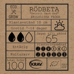 Rödbeta - Detroit Dark Red
