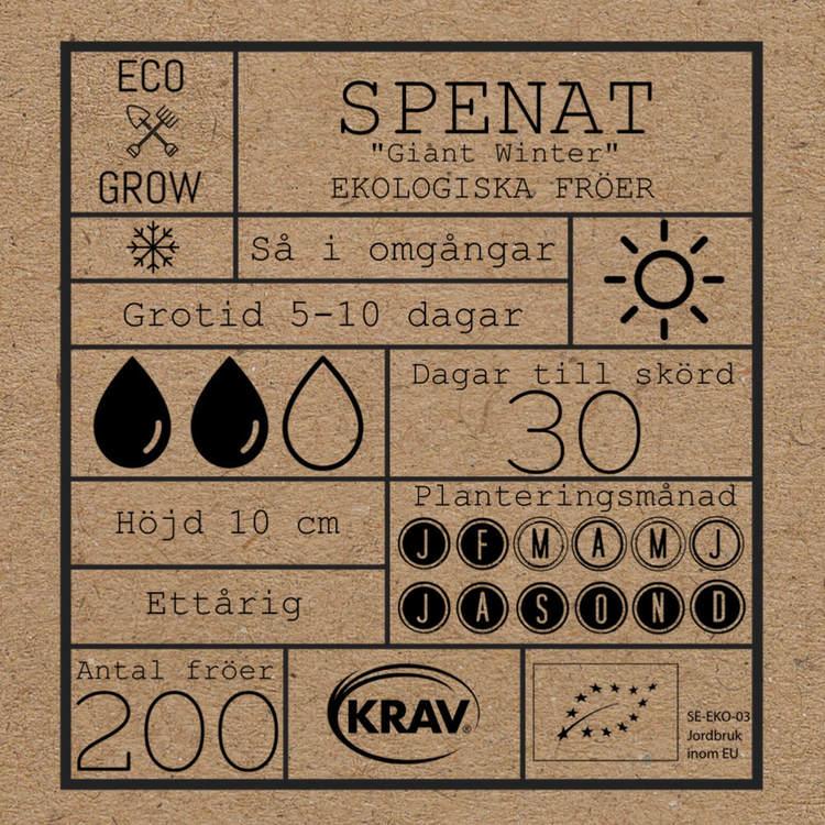 Spenat - Giant Winter