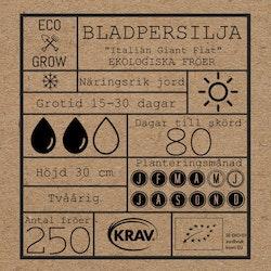Bladpersilja - Italian Giant Flat