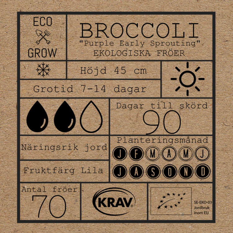 Broccoli - Purple Early Sprouting