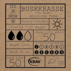 Buskkrasse - Tom Thumb