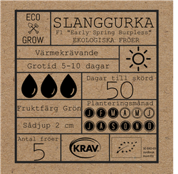 Slanggurka - Early Spring Burpless