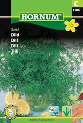 Dill - Sari
