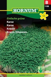 Krasse - Einfache grüne