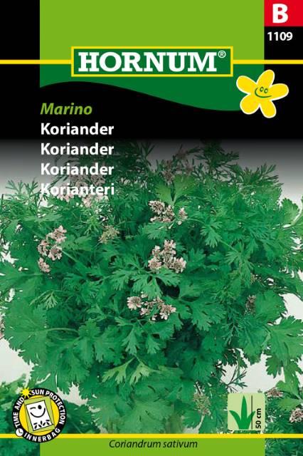 Koriander - Marino