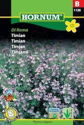 Timjan - Di Roma