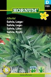 Salvia, Läke - Allerlei