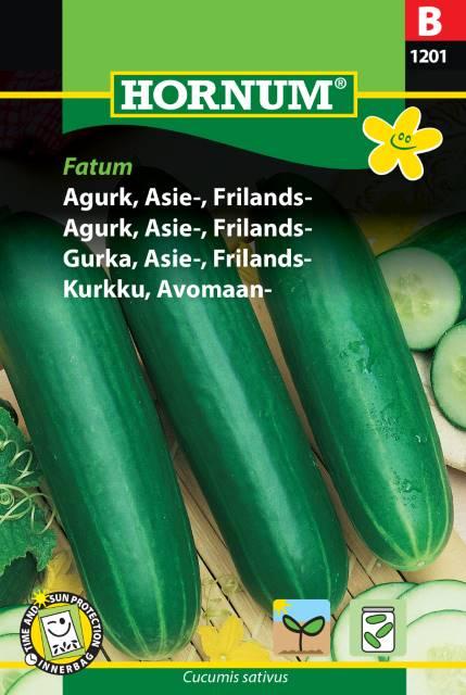 Gurka, Asie - Fatum