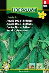 Gurka, druv - Libelle F1