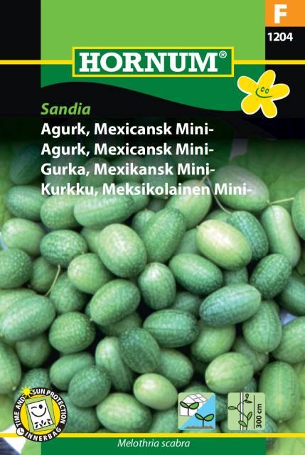 Djungelgurka - Sandia