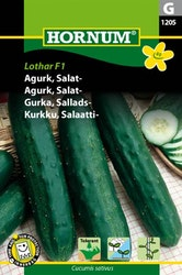 Sallads gurka - Lothar F1