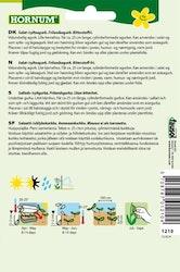 Inläggning / Salladsgurka - Moneta