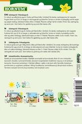 Salladsgurka - Burpless Tasty Green F1