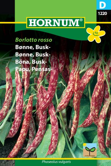 Buskböna - Borlotto Rosso