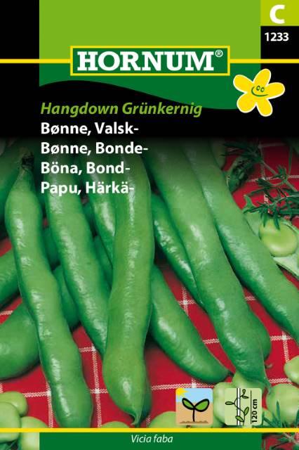 Bondböna - Hangdown Grünkernig