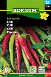 Chili - Lombardo