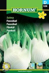 Fenkål - Selma