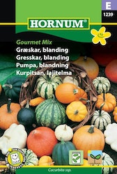 Pumpa mix - Gourmet mix