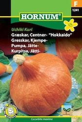 Jättepumpa (Hokkaido) - Uchiki Kuri