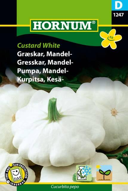 Mandel pumpa - Custard White