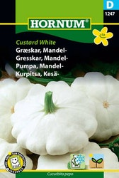 Mandel pumpa - Custard White