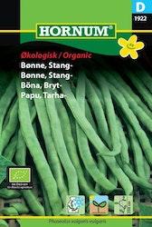 Brytböna (EKO) - Hornum frø