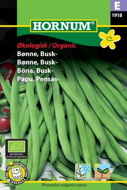 Busk böna (EKO) - Hornum frø