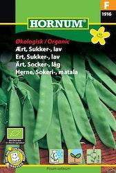 Låg Socker ärt (EKO) - Hornum frø