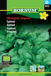 Spenat (EKO) - Hornum frø