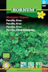 Krus persilja (EKO) - Hornum frø