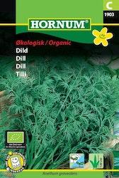 Dill (EKO) - Hornum frø