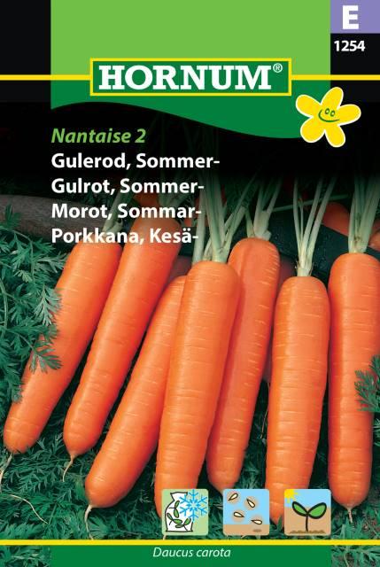 Sommar morot - Nataise 2
