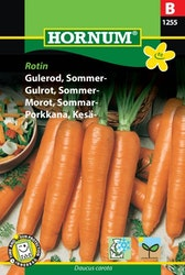 Sommar morot - Rotin