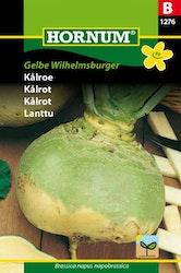 Kålrot - Gelbe Wilhelmsburger