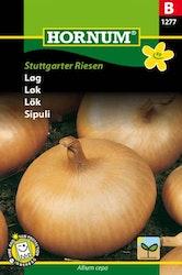 Lök - Stuttgarter Riesen