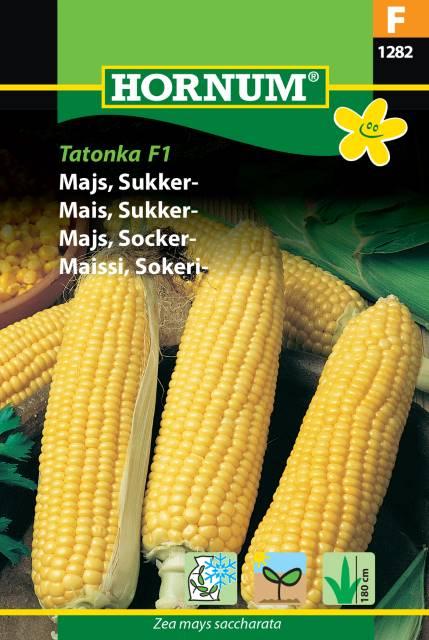 Sockermajs - Tatonka F1