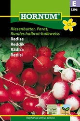 Rädisa (Såband) - Riesenbutter, Parat, Rundes halbrot/halbweiss