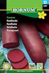 Rödbeta - Forono