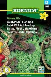 Plock sallad Mix - Fitness Mix