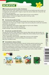 Cikoria sallad - Variegata di Castelfranco