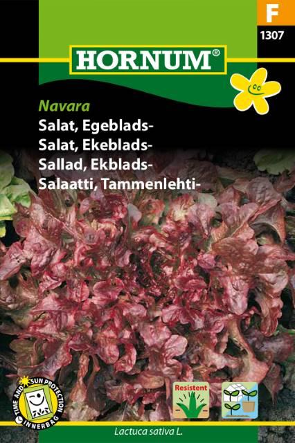 Ekblads sallad - Navara
